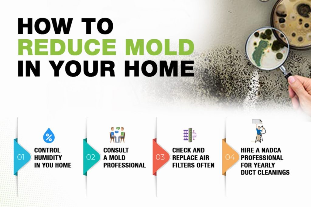 how to reduce mold indoors